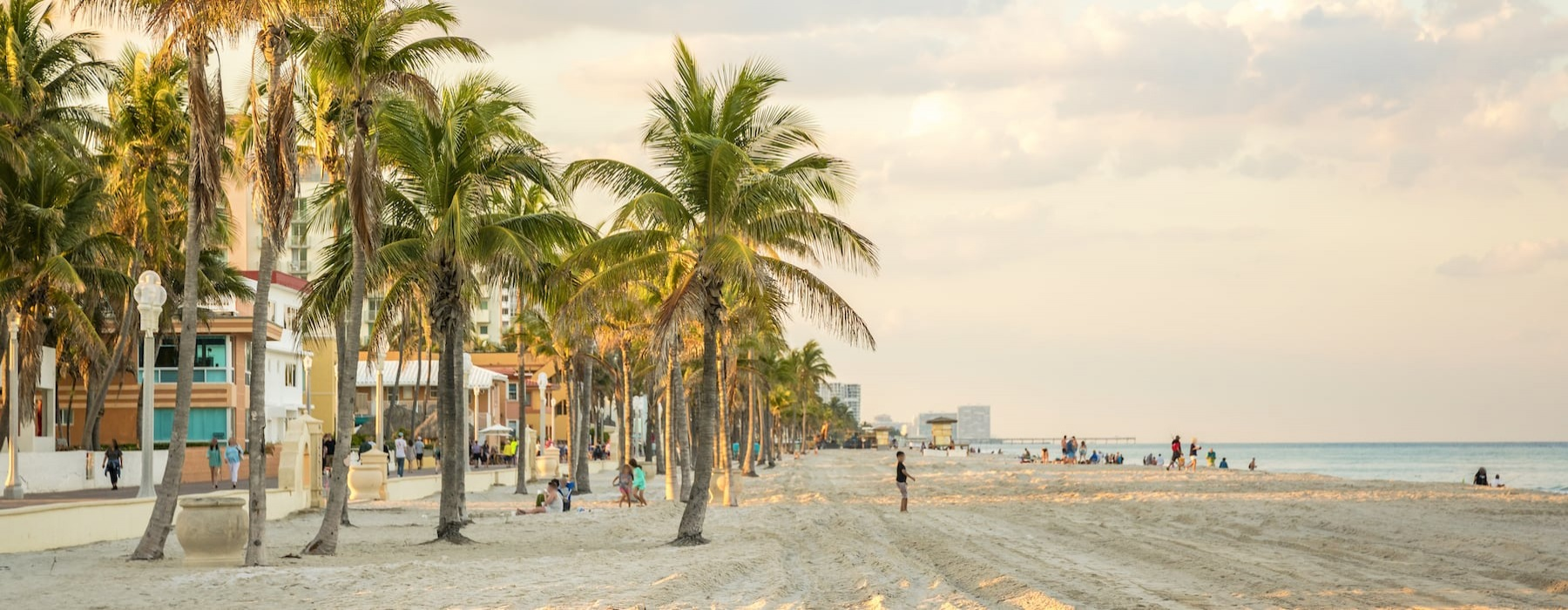lifestyle image of a beach showing palm trees and sunset shadows